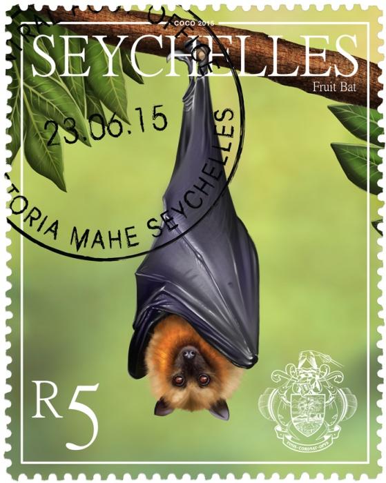 fruit bat organic fruit